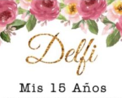 logo delfi